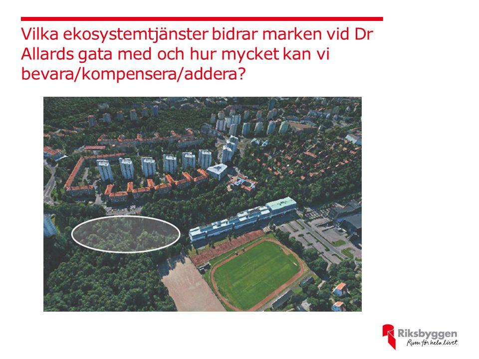 Vilka ekosystemtjänster bidrar marken vid Dr Allards gata med och hur mycket kan vi bevara/kompensera/addera?