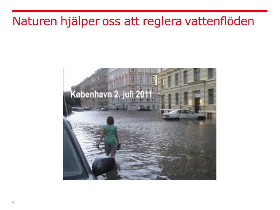Naturen hjälper oss att reglera vattenflöden 9
