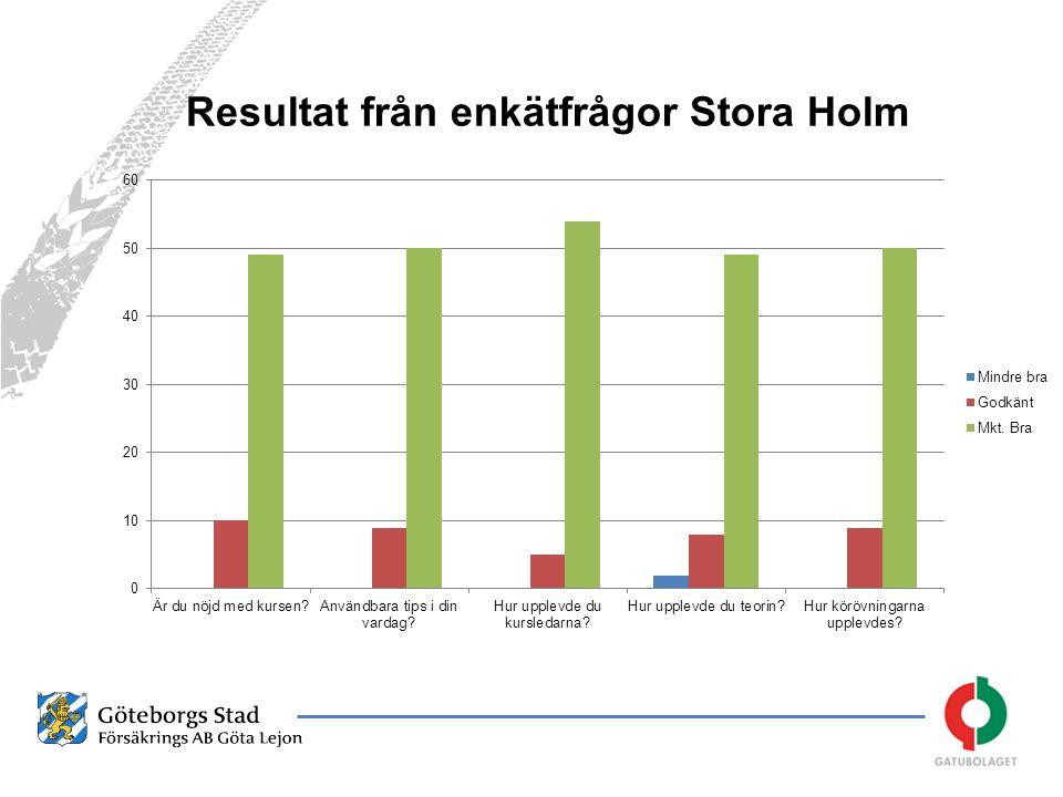 Resultat från enkätfrågor Stora Holm