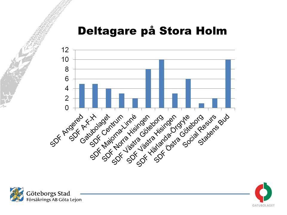 Deltagare på Stora Holm