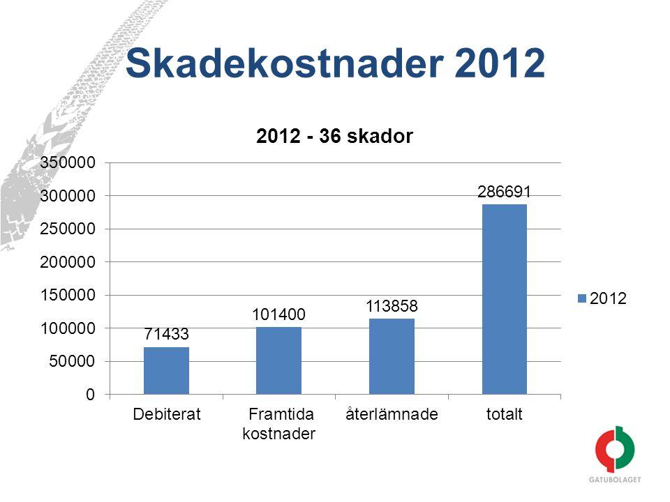 Skadekostnader 2012