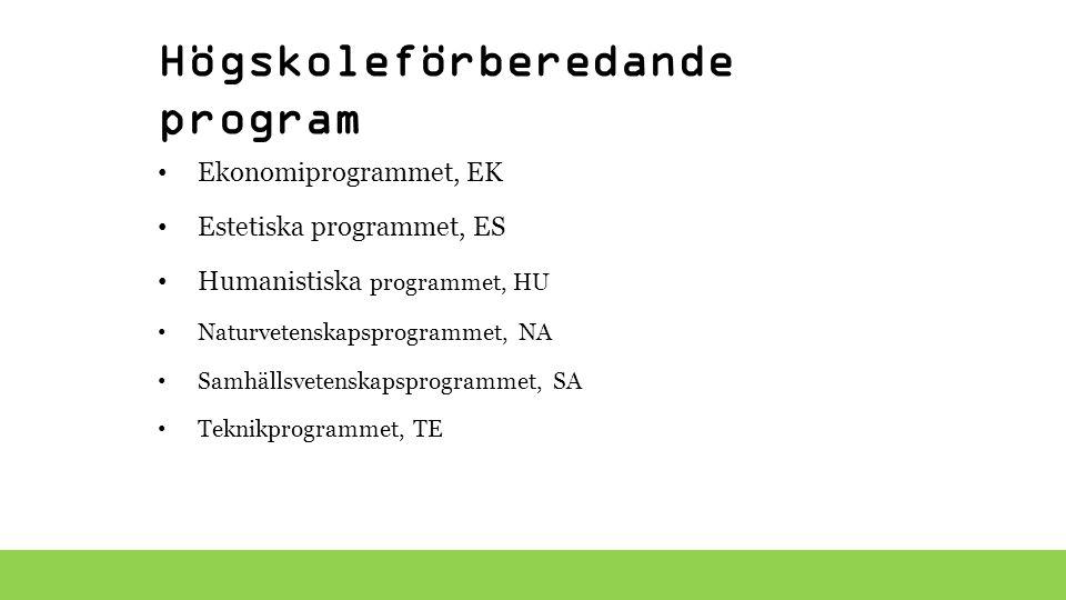 Yrkesprogram Barn- och fritidsprogrammet, BF Bygg- och anläggningsprogrammet, BA El- och energiprogrammet, EE Fordons- och transportprogrammet, FT Handels- och administrationsprogrammet, HA Hantverksprogrammet, HV Hotell- och turismprogrammet, HT Industritekniska programmet, IN Naturbruksprogrammet, NB Restaurang- och livsmedelsprogrammet, RL VVS- och fastighetsprogrammet, VF Vård- och omsorgsprogrammet, VO