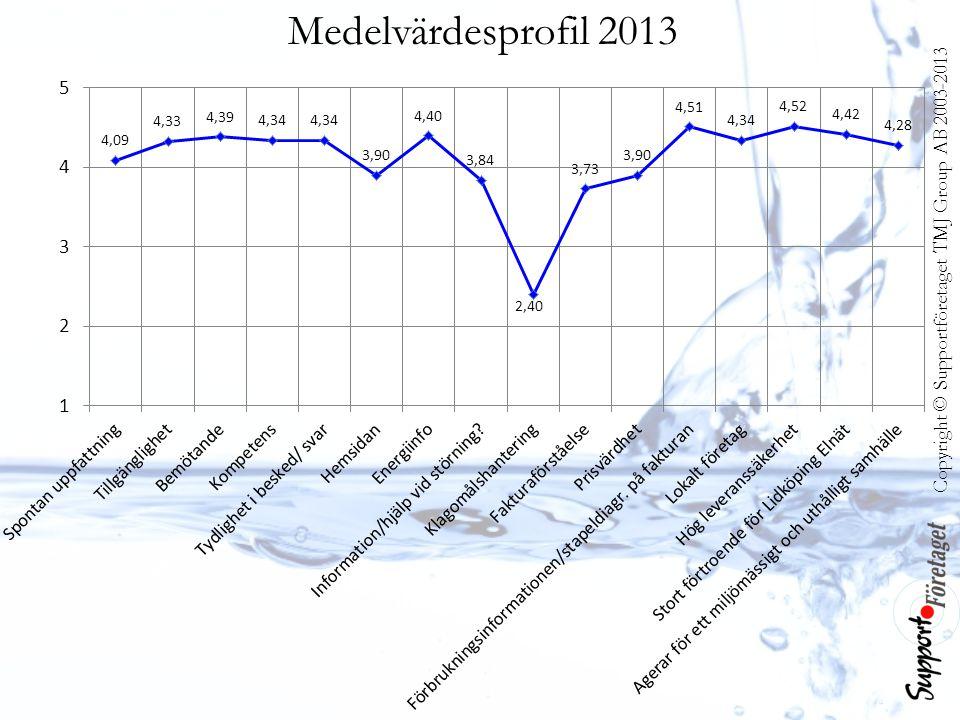 Copyright © Supportföretaget TMJ Group AB 2003-2013 Medelvärdesprofil 2013