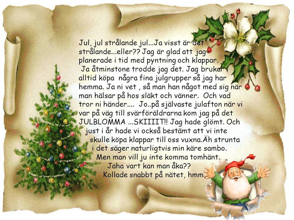 Jul, jul strålande jul...Ja visst är det strålande...eller?.