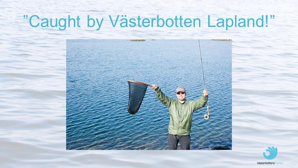 """Caught by Västerbotten Lapland!"""