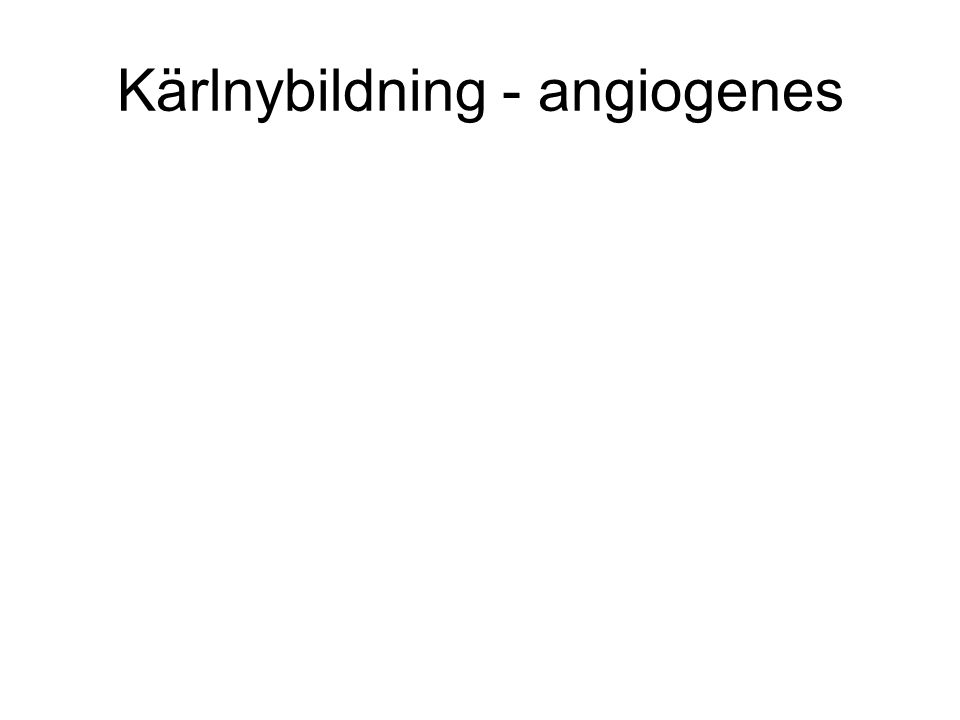 Kärlnybildning - angiogenes