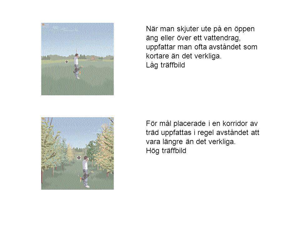 För mål placerade i en korridor av träd uppfattas i regel avståndet att vara längre än det verkliga. Hög träffbild När man skjuter ute på en öppen äng