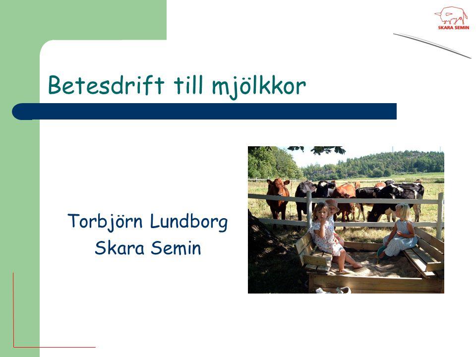Betesdrift till mjölkkor Torbjörn Lundborg Skara Semin