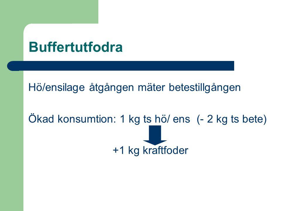 Buffertutfodra Hö/ensilage åtgången mäter betestillgången Ökad konsumtion: 1 kg ts hö/ ens (- 2 kg ts bete) +1 kg kraftfoder