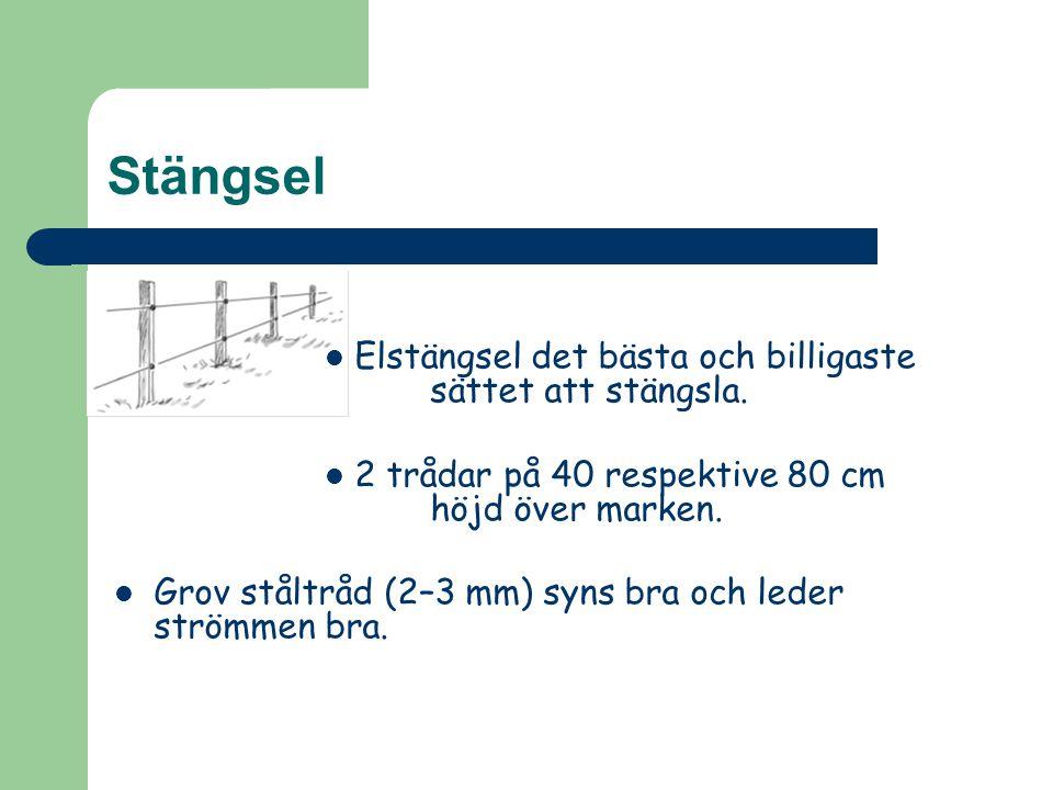 Stängsel Elstängsel det bästa och billigaste sättet att stängsla. 2 trådar på 40 respektive 80 cm höjd över marken. Grov ståltråd (2–3 mm) syns bra oc