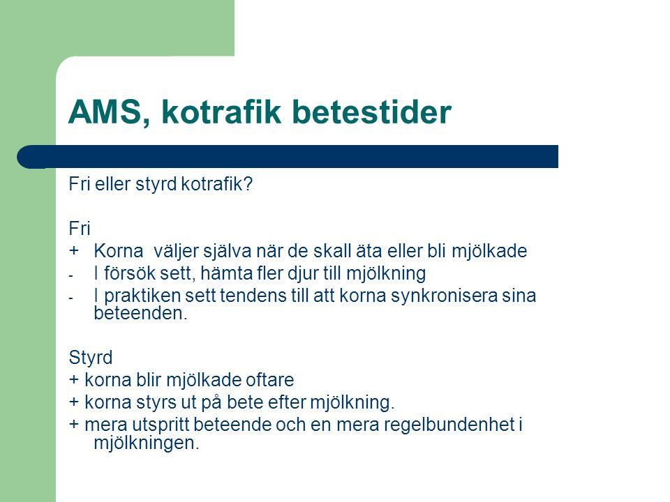 AMS, kotrafik betestider Fri eller styrd kotrafik? Fri +Korna väljer själva när de skall äta eller bli mjölkade - I försök sett, hämta fler djur till