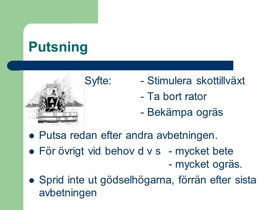 Putsning Syfte:- Stimulera skottillväxt - Ta bort rator - Bekämpa ogräs Putsa redan efter andra avbetningen. För övrigt vid behov d v s - mycket bete