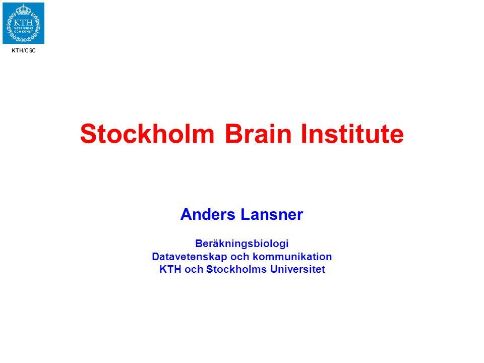 KTH/CSC Stockholm Brain Institute Anders Lansner Beräkningsbiologi Datavetenskap och kommunikation KTH och Stockholms Universitet