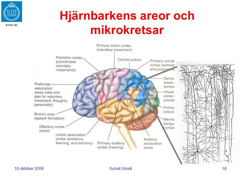 KTH/CSC 18 oktober 2006Sunet Umeå16 Hjärnbarkens areor och mikrokretsar