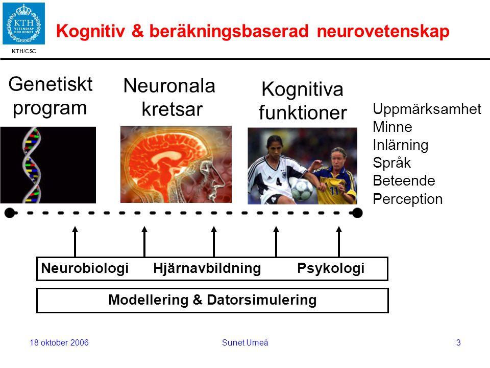KTH/CSC 18 oktober 2006Sunet Umeå3 Kognitiv & beräkningsbaserad neurovetenskap Kognitiva funktioner Uppmärksamhet Minne Inlärning Språk Beteende Perception Genetiskt program Neuronala kretsar Neurobiologi Hjärnavbildning Psykologi Modellering & Datorsimulering