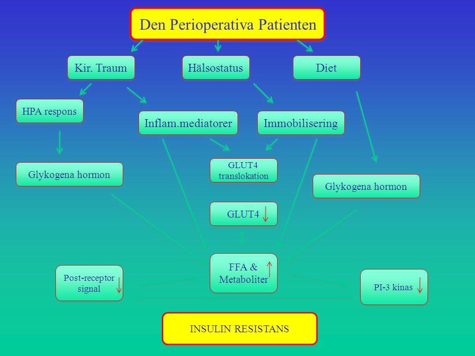 Kir. Traum Hälsostatus Diet HPA respons Immobilisering Inflam.mediatorer INSULIN RESISTANS Glykogena hormon GLUT4 translokation Post-receptor signal G
