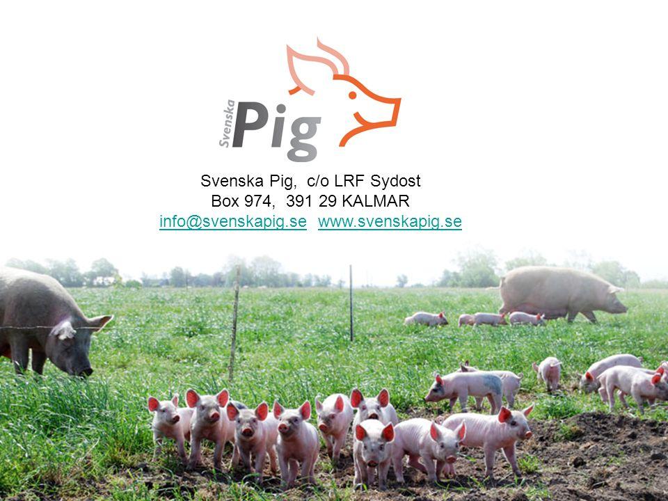 Avvänjnings- och tillväxtgrisen Svenska Pig, c/o LRF Sydost Box 974, 391 29 KALMAR info@svenskapig.seinfo@svenskapig.se www.svenskapig.sewww.svenskapi