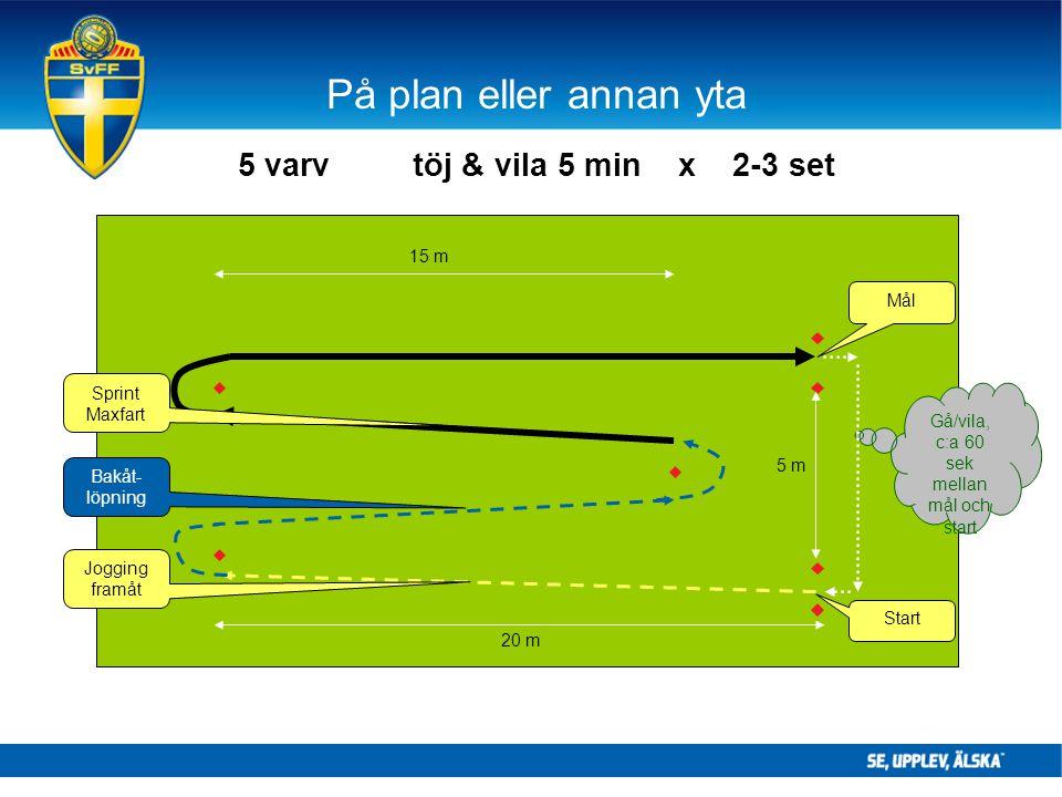 På plan eller annan yta 5 varv töj & vila 5 min x 2-3 set Gå/vila, c:a 60 sek mellan mål och start 15 m 20 m Jogging framåt Start Bakåt- löpning 5 m S