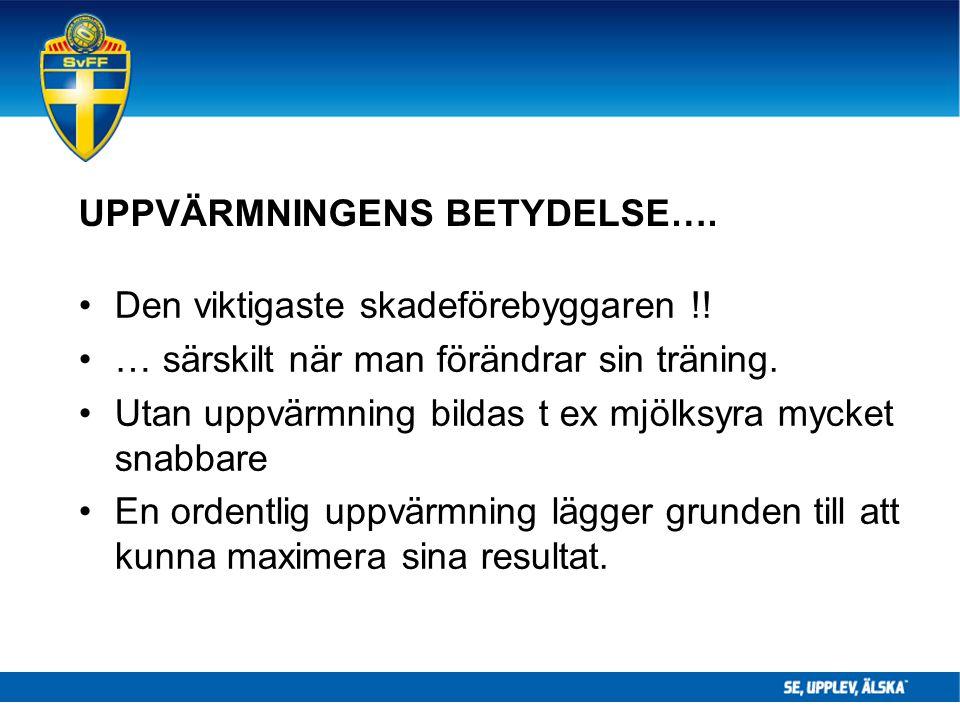 UPPVÄRMNINGENS BETYDELSE…. Den viktigaste skadeförebyggaren !! … särskilt när man förändrar sin träning. Utan uppvärmning bildas t ex mjölksyra mycket