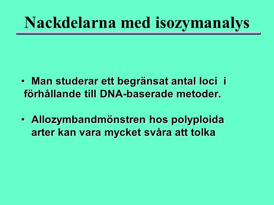 Nackdelarna med isozymanalys Man studerar ett begränsat antal loci iMan studerar ett begränsat antal loci i förhållande till DNA-baserade metoder. för