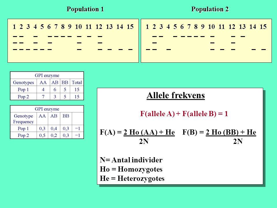 1 2 3 4 5 6 7 8 9 10 11 12 13 14 15 Population 1 Population 2 Allele frekvens F(allele A) + F(allele B) = 1 F(A) = 2 Ho (AA) + He F(B) = 2 Ho (BB) + H