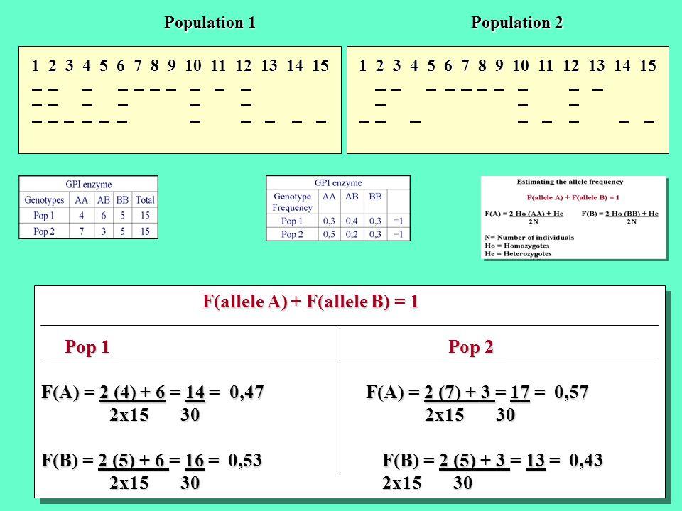 1 2 3 4 5 6 7 8 9 10 11 12 13 14 15 Population 1 Population 2 F(allele A) + F(allele B) = 1 F(allele A) + F(allele B) = 1 Pop 1 Pop 2 Pop 1 Pop 2 F(A)