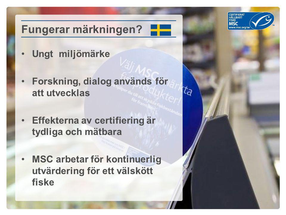 Ungt miljömärke Forskning, dialog används för att utvecklas Effekterna av certifiering är tydliga och mätbara MSC arbetar för kontinuerlig utvärdering för ett välskött fiske Fungerar märkningen?