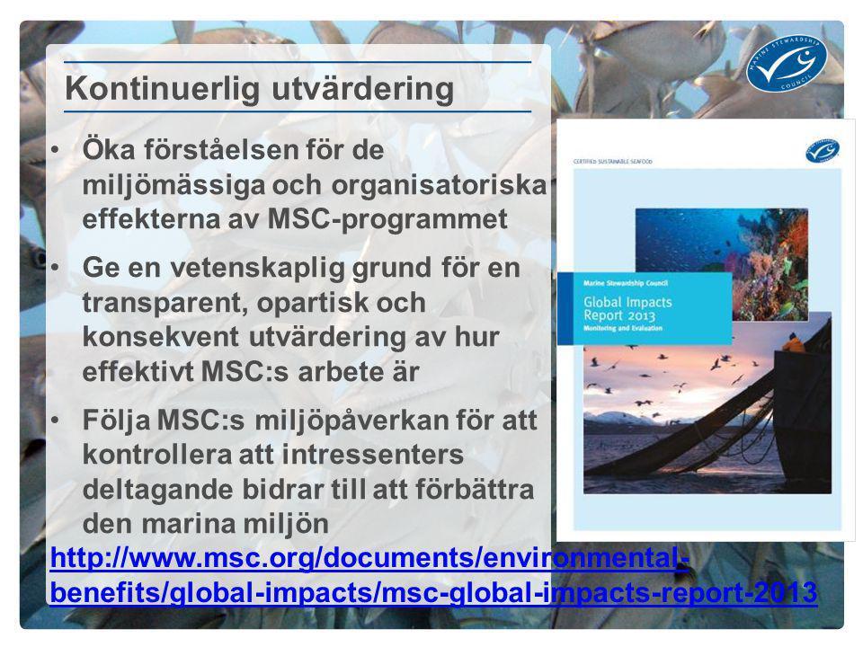 Öka förståelsen för de miljömässiga och organisatoriska effekterna av MSC-programmet Ge en vetenskaplig grund för en transparent, opartisk och konsekvent utvärdering av hur effektivt MSC:s arbete är Följa MSC:s miljöpåverkan för att kontrollera att intressenters deltagande bidrar till att förbättra den marina miljön Kontinuerlig utvärdering http://www.msc.org/documents/environmental- benefits/global-impacts/msc-global-impacts-report-2013