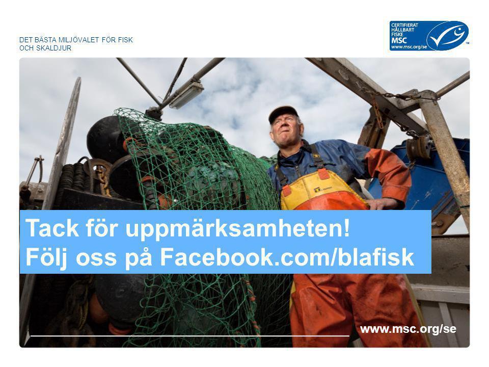 www.msc.org/se DET BÄSTA MILJÖVALET FÖR FISK OCH SKALDJUR Tack för uppmärksamheten! Följ oss på Facebook.com/blafisk