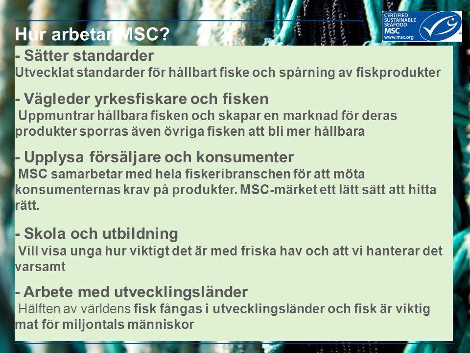 - Sätter standarder Utvecklat standarder för hållbart fiske och spårning av fiskprodukter - Vägleder yrkesfiskare och fisken Uppmuntrar hållbara fiske