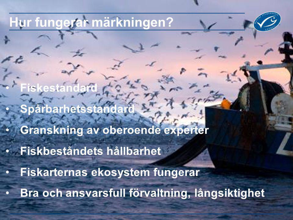 Fiskestandard Spårbarhetsstandard Granskning av oberoende experter Fiskbeståndets hållbarhet Fiskarternas ekosystem fungerar Bra och ansvarsfull förva