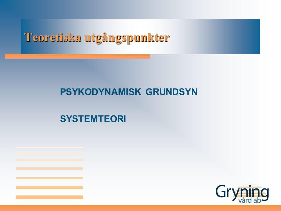 Teoretiska utgångspunkter PSYKODYNAMISK GRUNDSYN SYSTEMTEORI
