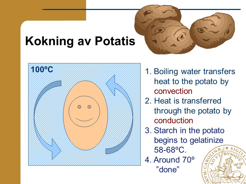 100ºC Kokning av Potatis 1. Boiling water transfers heat to the potato by convection 2.Heat is transferred through the potato by conduction 3. Starch