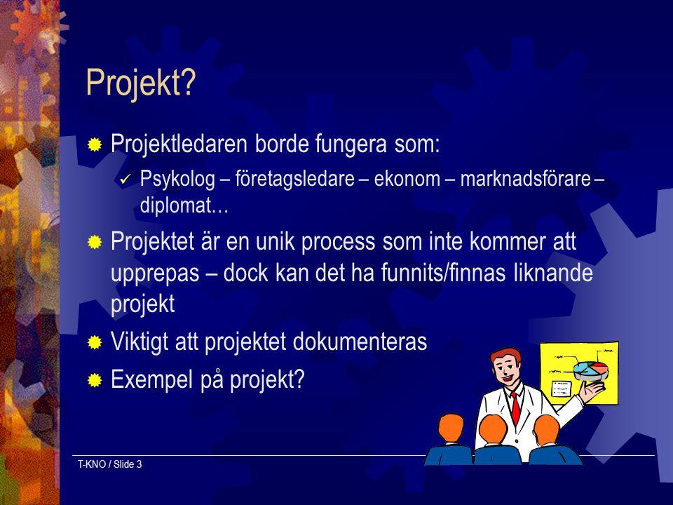 T-KNO / Slide 3 Projekt?  Projektledaren borde fungera som: Psykolog – företagsledare – ekonom – marknadsförare – diplomat…  Projektet är en unik pr