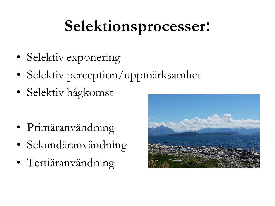 Selektionsprocesser : Selektiv exponering Selektiv perception/uppmärksamhet Selektiv hågkomst Primäranvändning Sekundäranvändning Tertiäranvändning