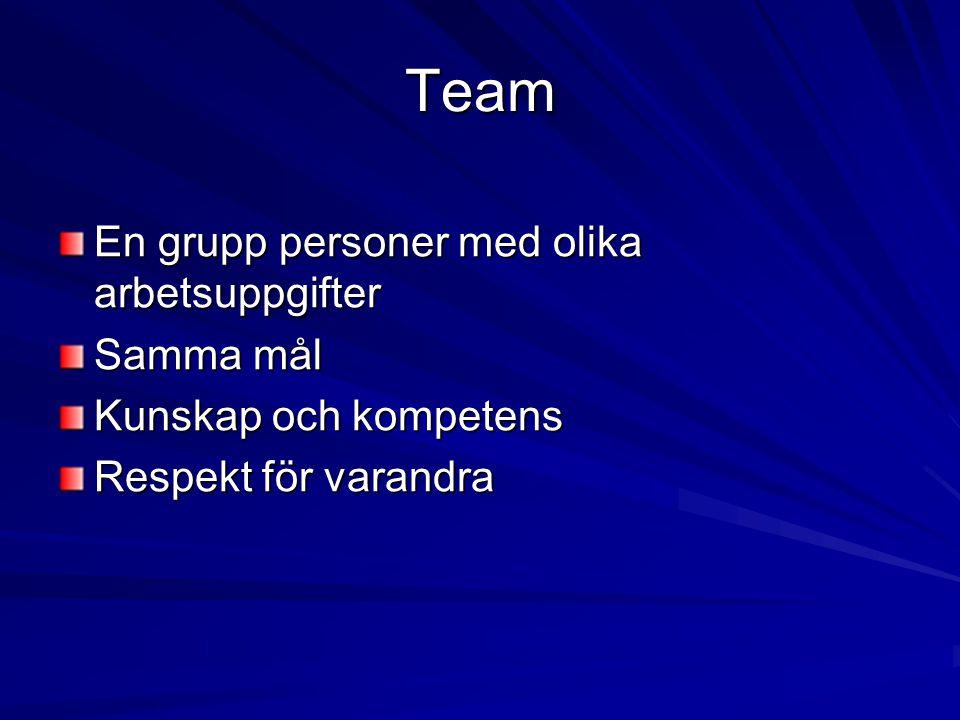 Välfungerande team Klart ledarskap Klara mål – målet med vården Tydliga värderingar Klara yrkesroller Klara krav Realistiska förväntningar Tillräckliga resurser Trygg anställning