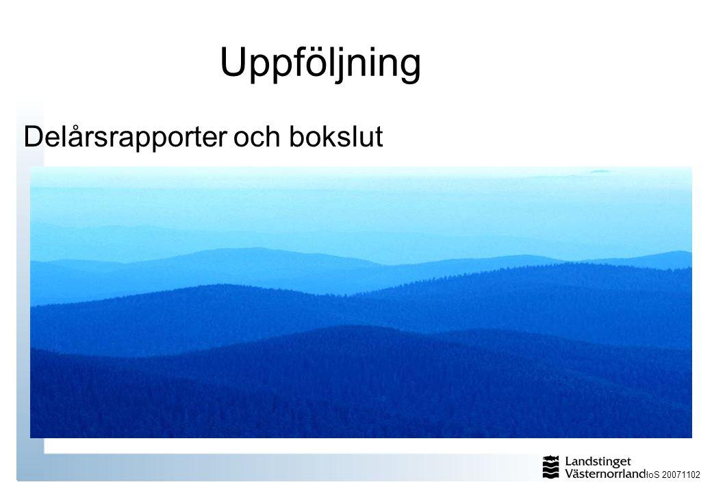 HoS 20071102 Uppföljning Delårsrapporter och bokslut