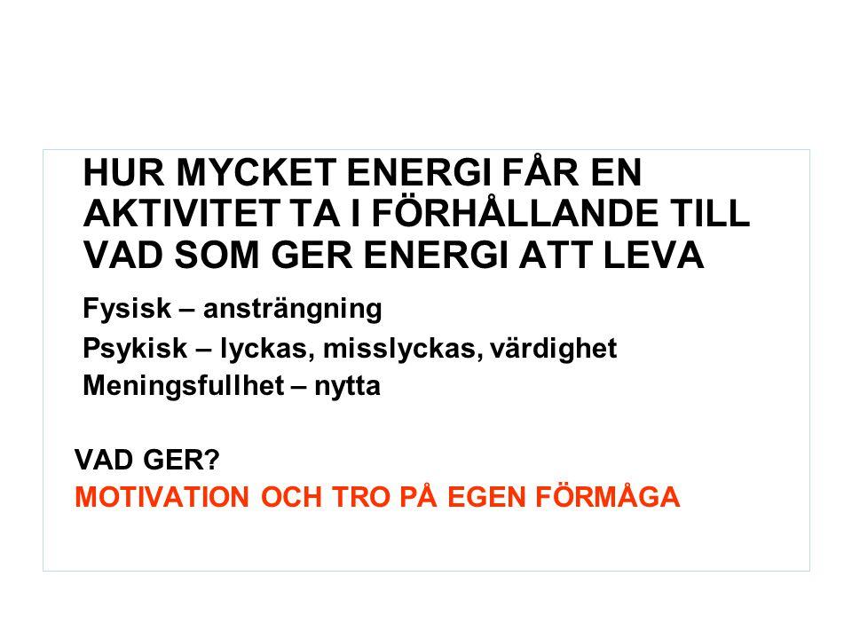 HUR MYCKET ENERGI FÅR EN AKTIVITET TA I FÖRHÅLLANDE TILL VAD SOM GER ENERGI ATT LEVA Fysisk – ansträngning Psykisk – lyckas, misslyckas, värdighet Men