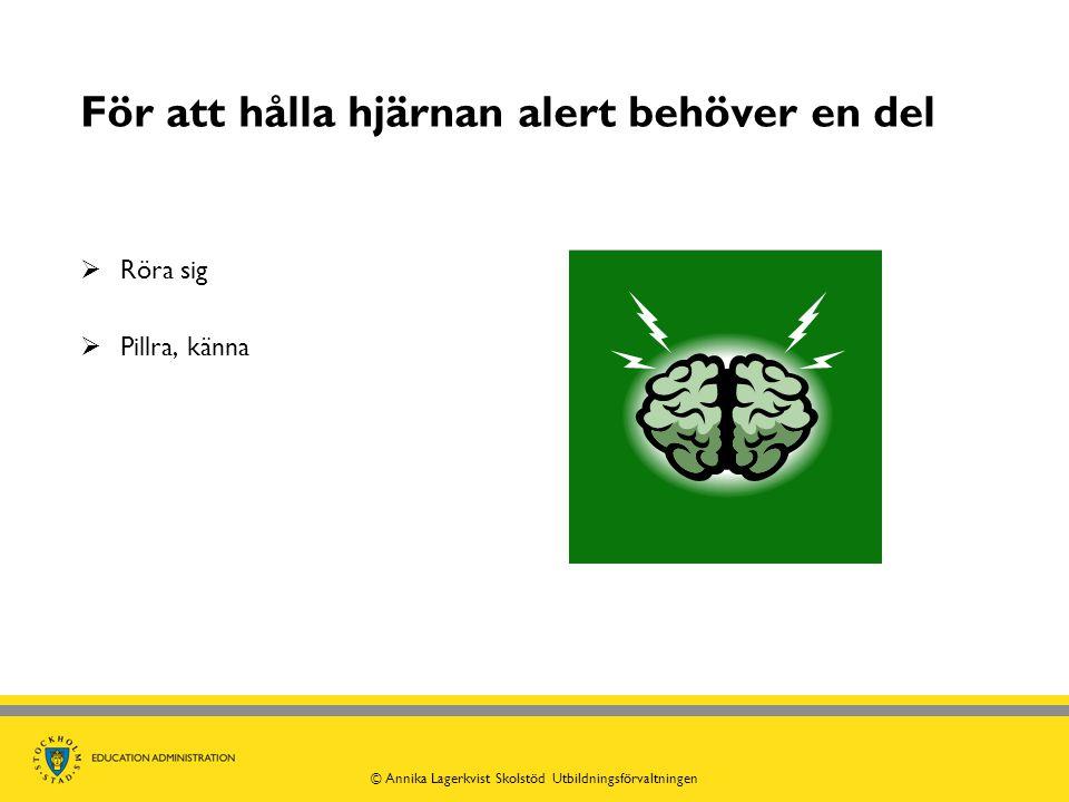 För att hålla hjärnan alert behöver en del  Röra sig  Pillra, känna © Annika Lagerkvist Skolstöd Utbildningsförvaltningen