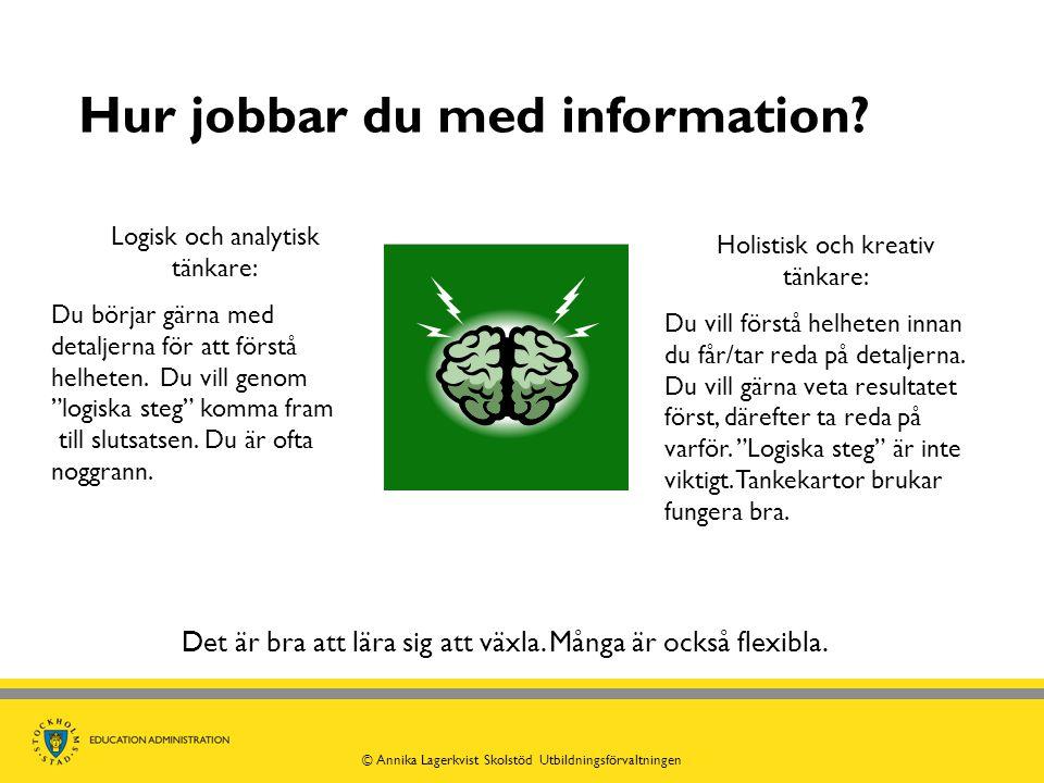 """Hur jobbar du med information? Logisk och analytisk tänkare: Du börjar gärna med detaljerna för att förstå helheten. Du vill genom """"logiska steg"""" komm"""