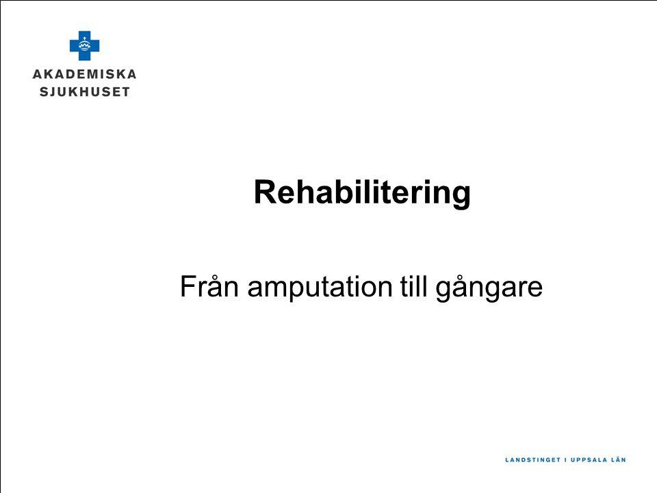 Rehabilitering Från amputation till gångare