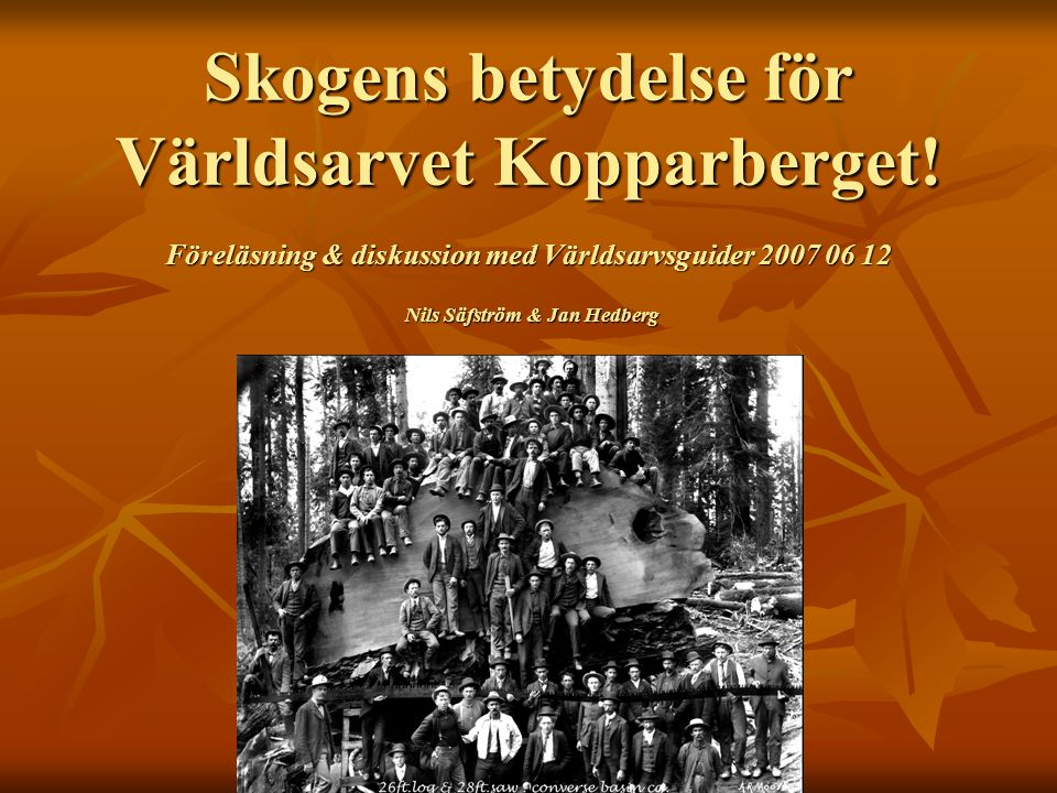 Skogens betydelse för Världsarvet Kopparberget! Föreläsning & diskussion med Världsarvsguider 2007 06 12 Nils Säfström & Jan Hedberg