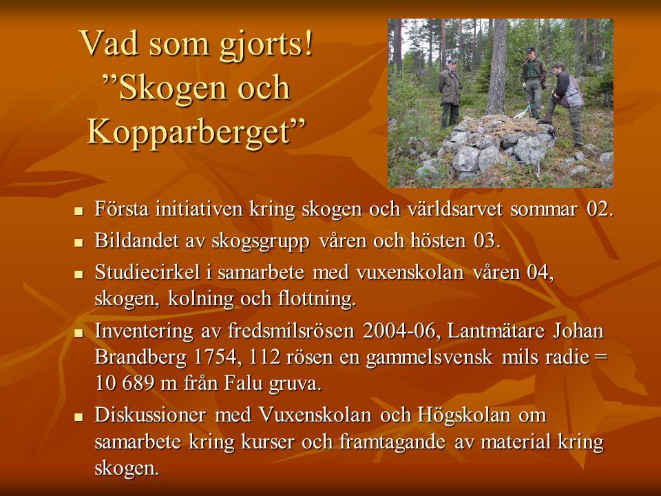 """Vad som gjorts! """"Skogen och Kopparberget"""" Första initiativen kring skogen och världsarvet sommar 02. Första initiativen kring skogen och världsarvet s"""