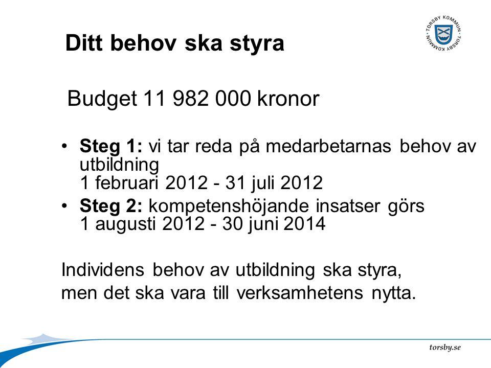 Ditt behov ska styra Budget 11 982 000 kronor Steg 1: vi tar reda på medarbetarnas behov av utbildning 1 februari 2012 - 31 juli 2012 Steg 2: kompeten