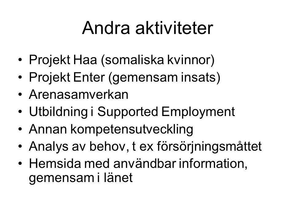 Andra aktiviteter Projekt Haa (somaliska kvinnor) Projekt Enter (gemensam insats) Arenasamverkan Utbildning i Supported Employment Annan kompetensutveckling Analys av behov, t ex försörjningsmåttet Hemsida med användbar information, gemensam i länet