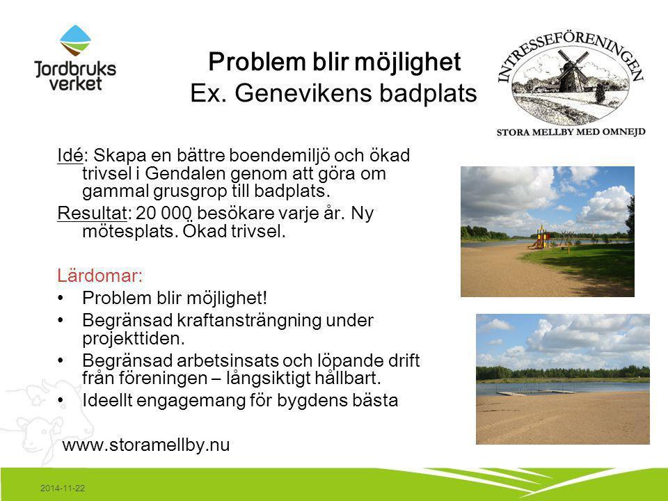 2014-11-22 Problem blir möjlighet Ex. Genevikens badplats Idé: Skapa en bättre boendemiljö och ökad trivsel i Gendalen genom att göra om gammal grusgr