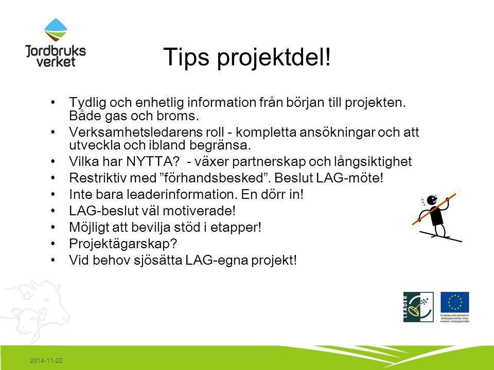 2014-11-22 Tips projektdel! Tydlig och enhetlig information från början till projekten. Både gas och broms. Verksamhetsledarens roll - kompletta ansök