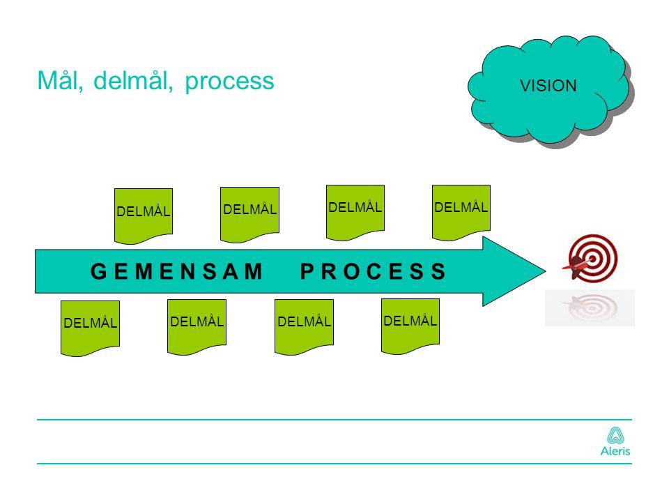 Mål, delmål, process VISION G E M E N S A M P R O C E S S DELMÅL