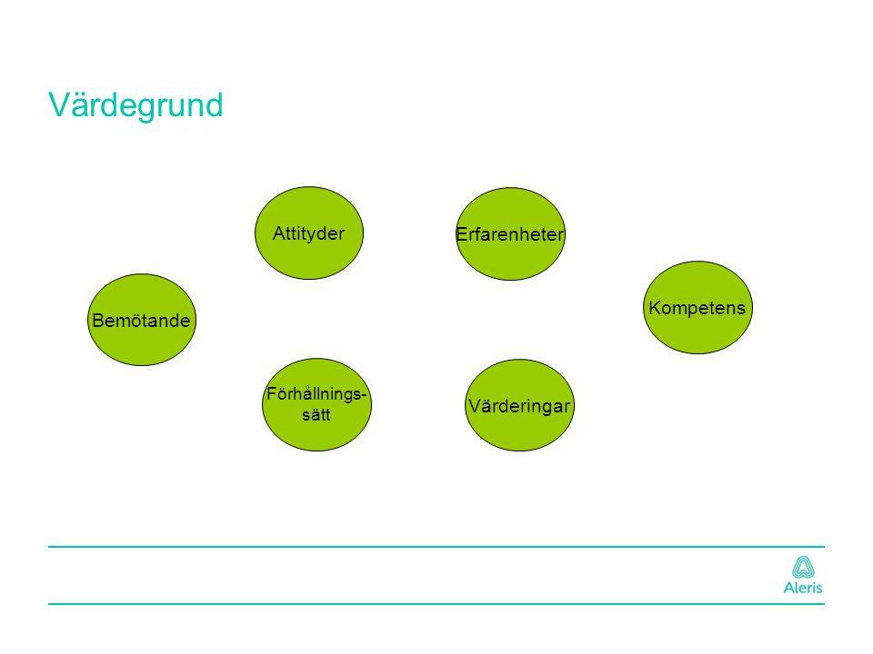Värdegrund Bemötande Attityder Förhållnings- sätt Erfarenheter Värderingar Kompetens