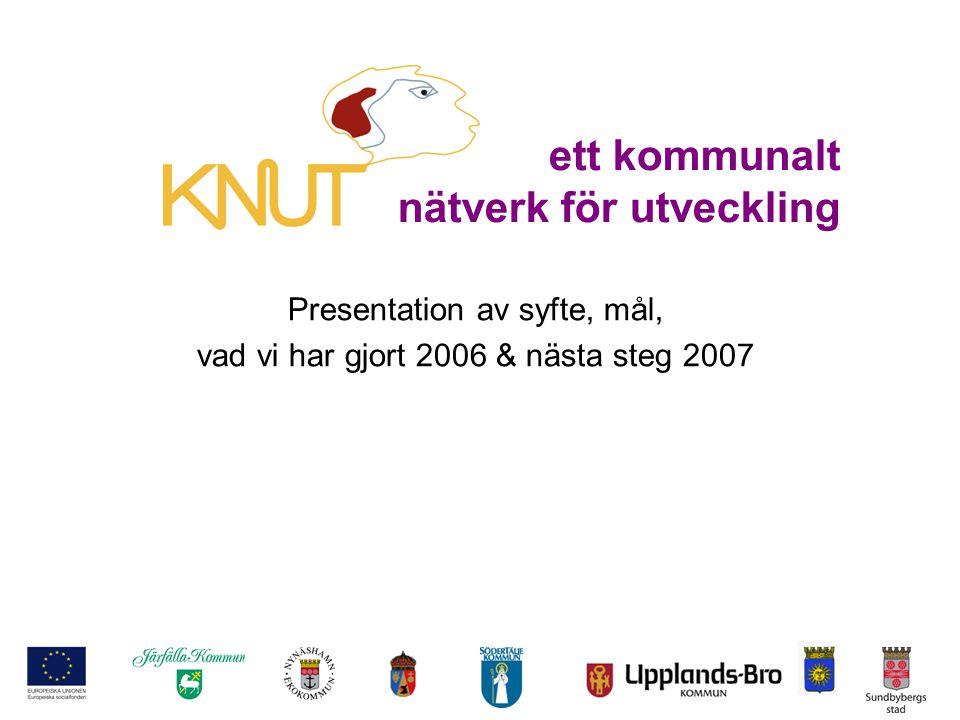ett kommunalt nätverk för utveckling Presentation av syfte, mål, vad vi har gjort 2006 & nästa steg 2007